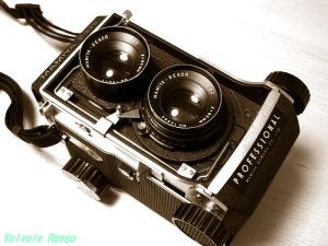 マミヤC220プロフェッショナル 温黒調モノクロ写真