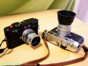 (Right) LEICA M6 ttl (0.85x) Summicron M 50mm F2 (Left) LEICA M6 ttl (0.85x) Elmar M 50mm F2.8