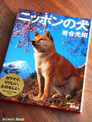 ニッポンの犬 岩合 光昭