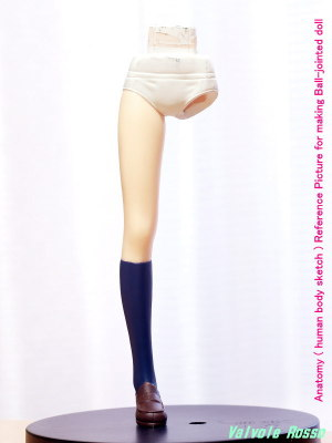Anatomy ( human body sketch ) Reference Picture for making Ball-jointed doll SEGAプレミアムフィギュア Another 見崎鳴