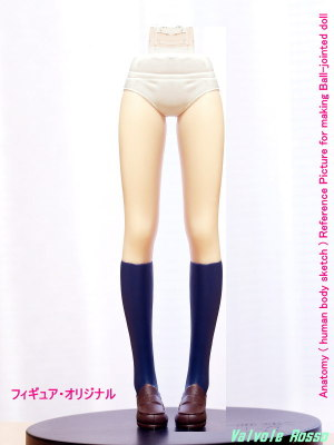 Anatomy ( human body sketch ) Reference Picture for making Ball-jointed doll (中心線でミラーコピー)