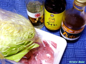 とりあえず豚肉とキャベツで簡単に鍋を作ろうと思う。スタミナ源たれは豚肉のにおい消し。キッコーマンゆずかで食べようかなと。。。