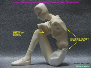 ガレージキット ニューライン 1/6 Scale 読書するレイ Anatomy ( human body sketch ) Reference Picture for making Ball-jointed doll