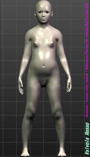MakeHuman 1.1.1 「モデルちゃん11才」 《正面図》 球体関節人形の設計図を描く際の参考資料です。