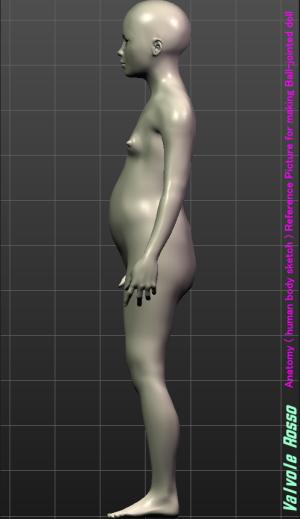 MakeHuman 1.1.1 「モデルちゃん11才」 《側面図》 球体関節人形の設計図を描く際の参考資料です。