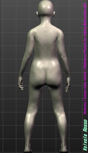 MakeHuman 1.1.1 「モデルちゃん11才」 《後面図》 球体関節人形の設計図を描く際の参考資料です。