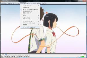 DVDだと画像キャプチャー(スナップショット)機能を使用できるので、キャラクターの正面顔&横顔などを保存して、ドールヘッドの設計の下書きに使えたりします。