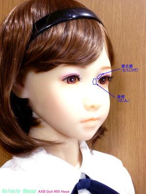 個人的には、AXB Doll #50番ヘッドの「鼻根が低い」のと「蒙古襞がある」トコが大変気に入っております。