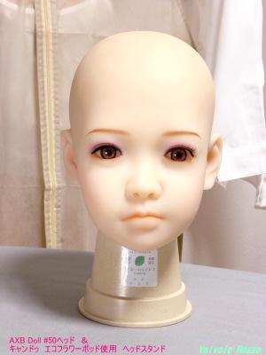AXB Doll #50ヘッド & キャンドゥ「エコフラワーポット」を使用したヘッドスタンド