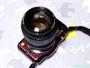 Panasonic LUMIX DMC-GF5 & LZOS(Lytkarino) MC JUPITER9 85mm F2 (M42)