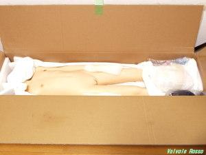 AXB Doll #41ヘッド 136cm ホワイトボディ の梱包を開封してみた。